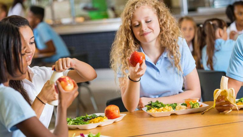 Program Diet Yang Sehat dan Tepat Untuk Para Remaja I